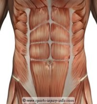 Lower Abdominals