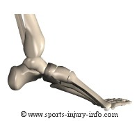 Broken Ankle Advice - Sports Injury Info