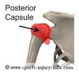 Posterior Glenohumeral Ligament - Sports Injury Info