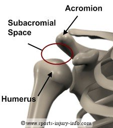 Subacromial Space