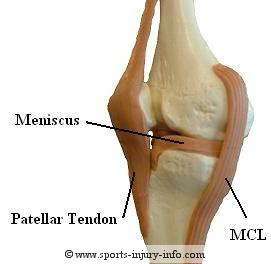 Ligament knee injury